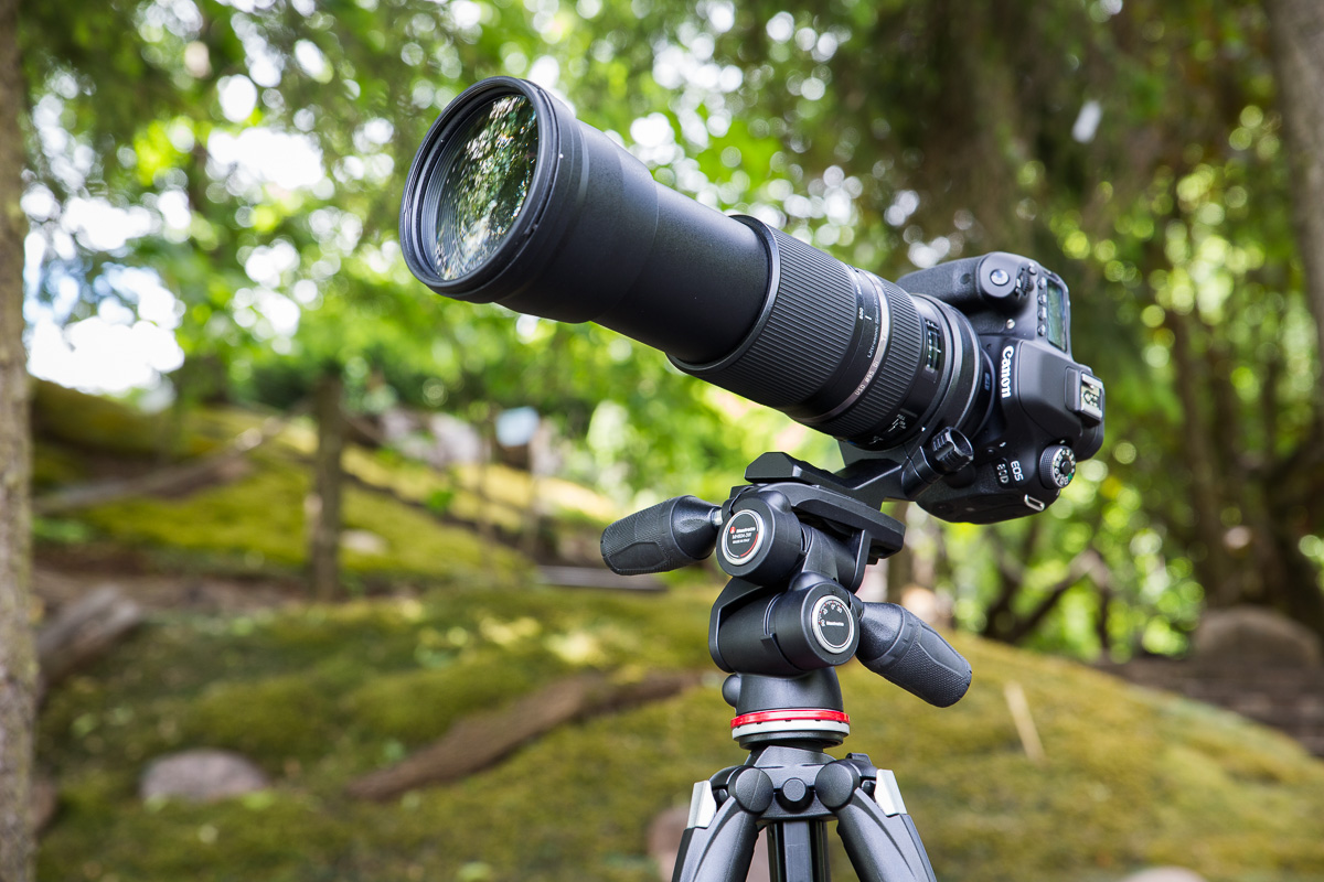 Лучшая сделка этого лета: преврати свой Canon или Nikon в мощное оружие для фотоохоты