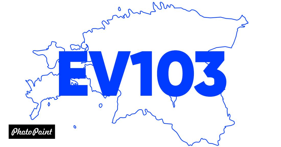Давайте праздновать - по случаю 103-го дня рождения Эстония все товары в корзине с дополнительной скидкой