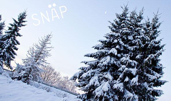 Sony Talvefoto 2013 fotokonkursi võidutöö näitab, kuidas lumi maha saab
