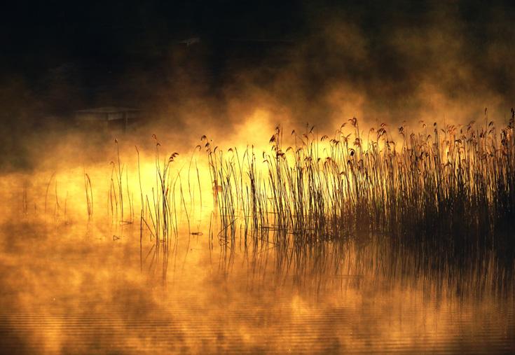 Esimesed päikesekiired on udu imeliseks maalinud