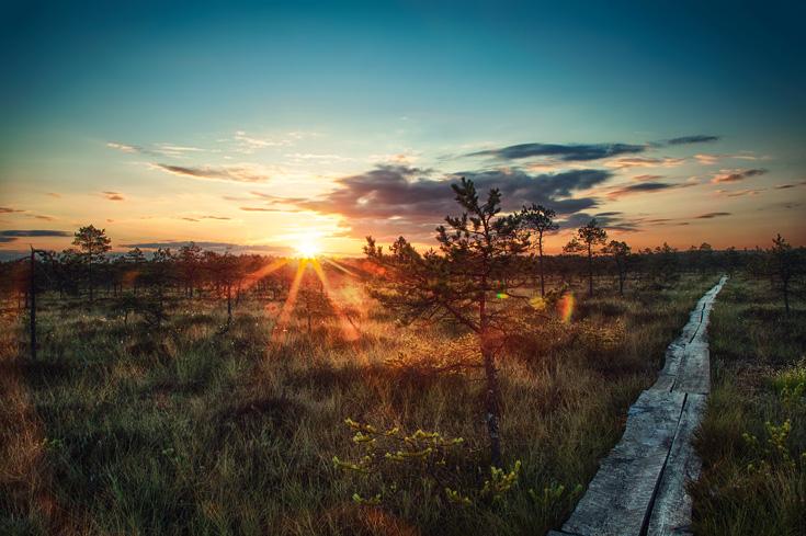 Päikese ootel