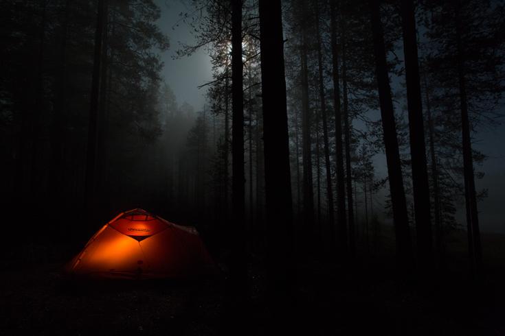 üks latern pimedas metsas