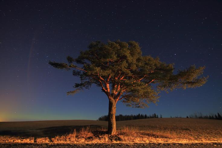 Lõuna-Eesti värviline öö