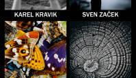 """Täna avatakse Pärnus fotonäitus """"Eesti kaasaegne fotokunst""""."""