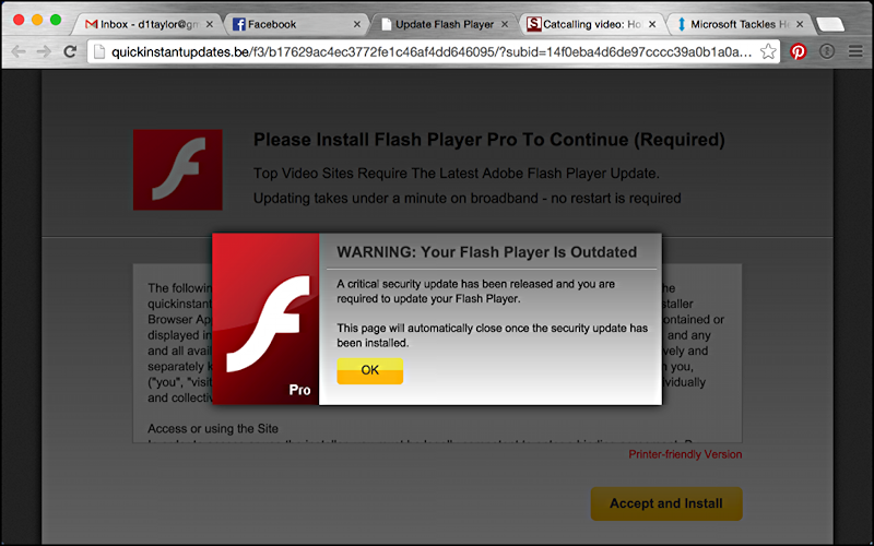 bogus-flash-update-malware-1