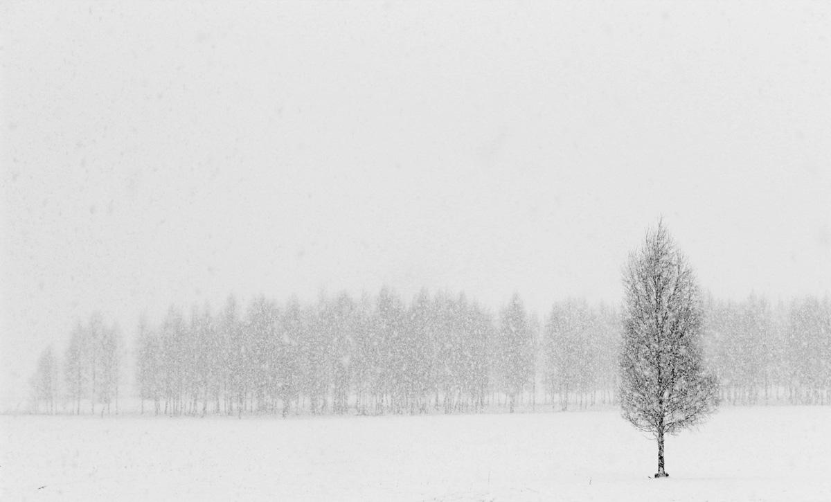 Kased lumetormis