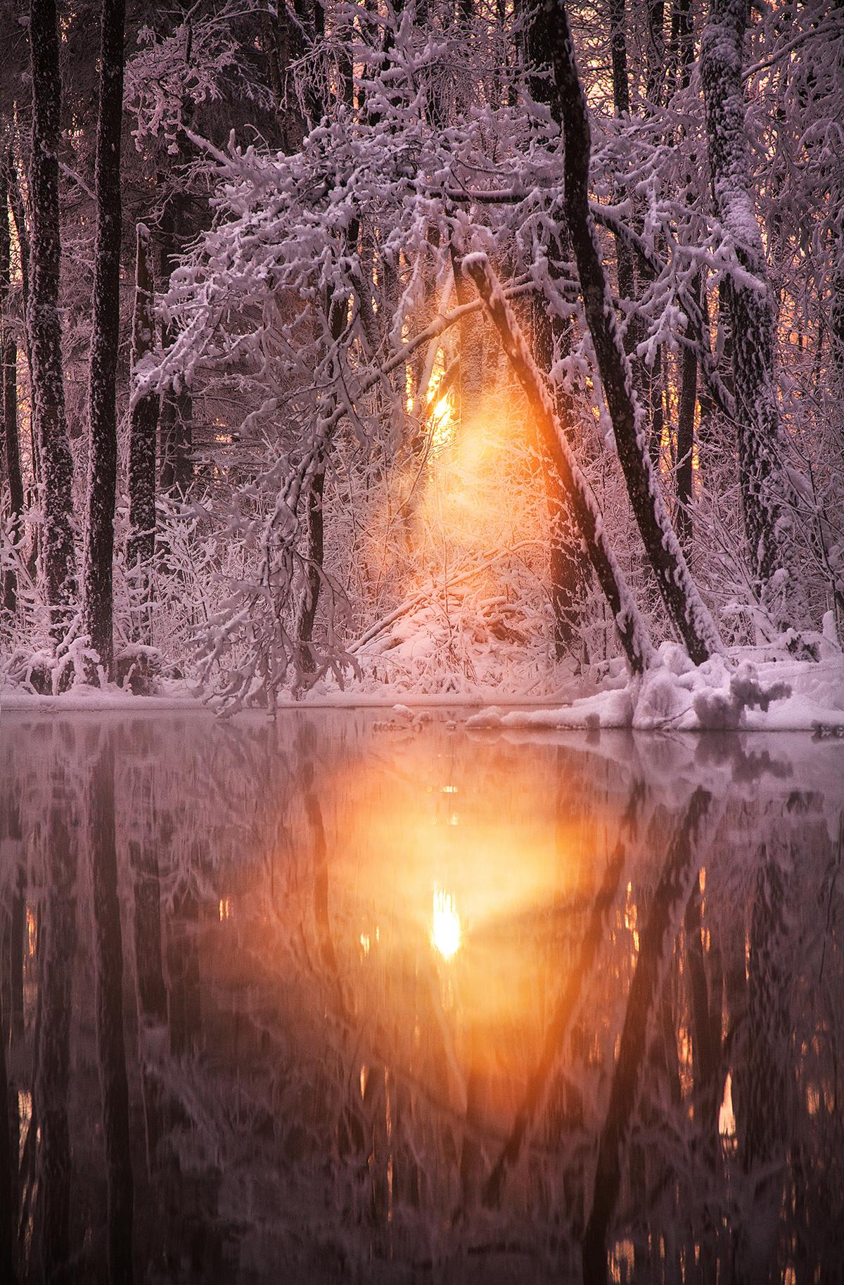 Talve ilu kogu tema hiilguses