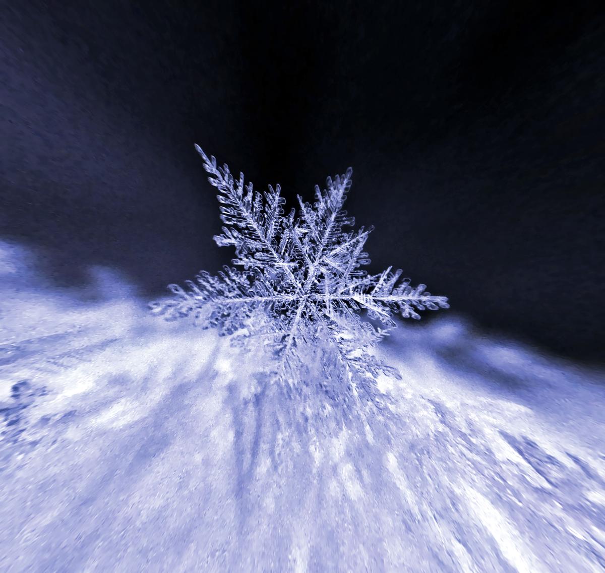 Talv,see on lumi ja nii üks helves maapinnale kihutabki.