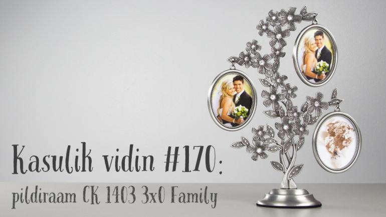Kasulik vidin #170: Pildiraam CK 1403 3x0 BP Family