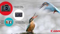 Lõppemas on suur kevadele pühendatud fotokonkurss. Auhinnafondis üle 2000€ väärtuses Canoni fototehnikat