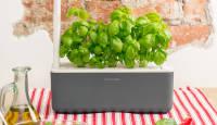 Uuenduslikud taimekapslid Click & Grow Smart Garden ja Smart Herb Garden digipõldudele
