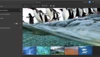 Adobe kogemata lekitas arendusjärgus oleva pilvepõhise fototöötlusrakenduse