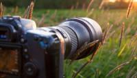 Loodusfotograaf Karl Adami: Tamron SP 150-600mm G2 teletoruga jagub linnuõnne rohkelt