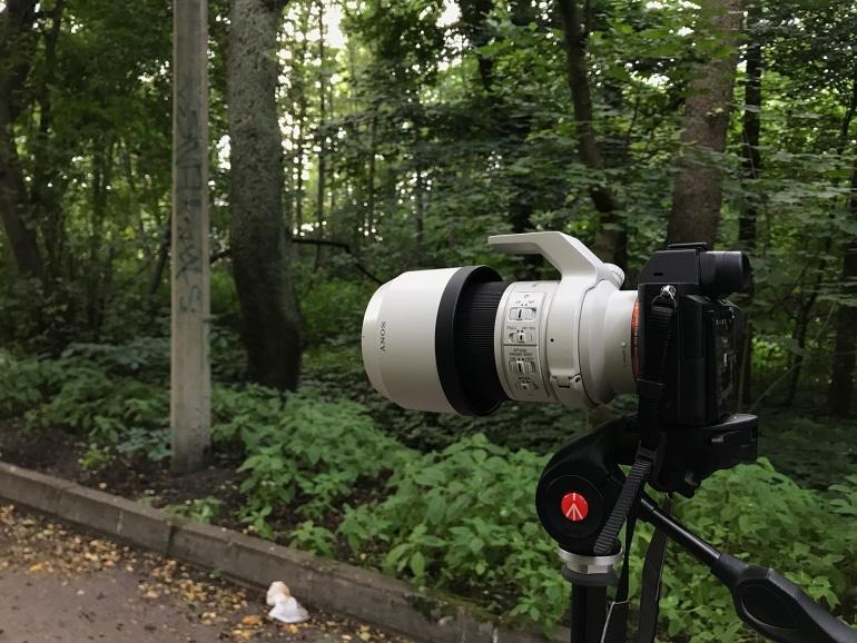 Metsakutsu proovis järele: 70-200mm teleobjektiiv koos Sony hübriidkaameraga on elu