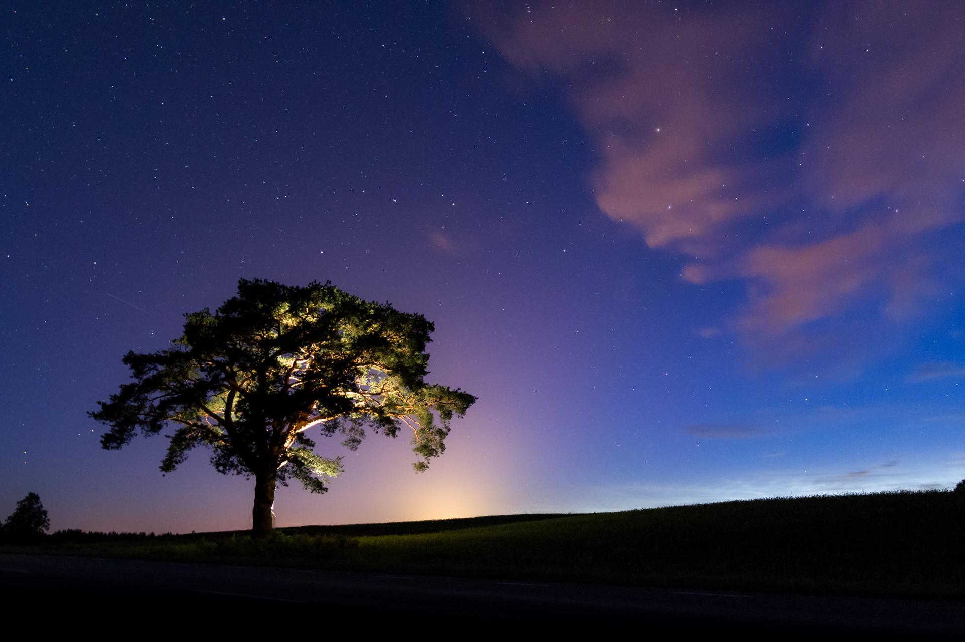 Uus veebipõhine kursus juhatab fotohuvilised ööfotograafia lummavasse maailma