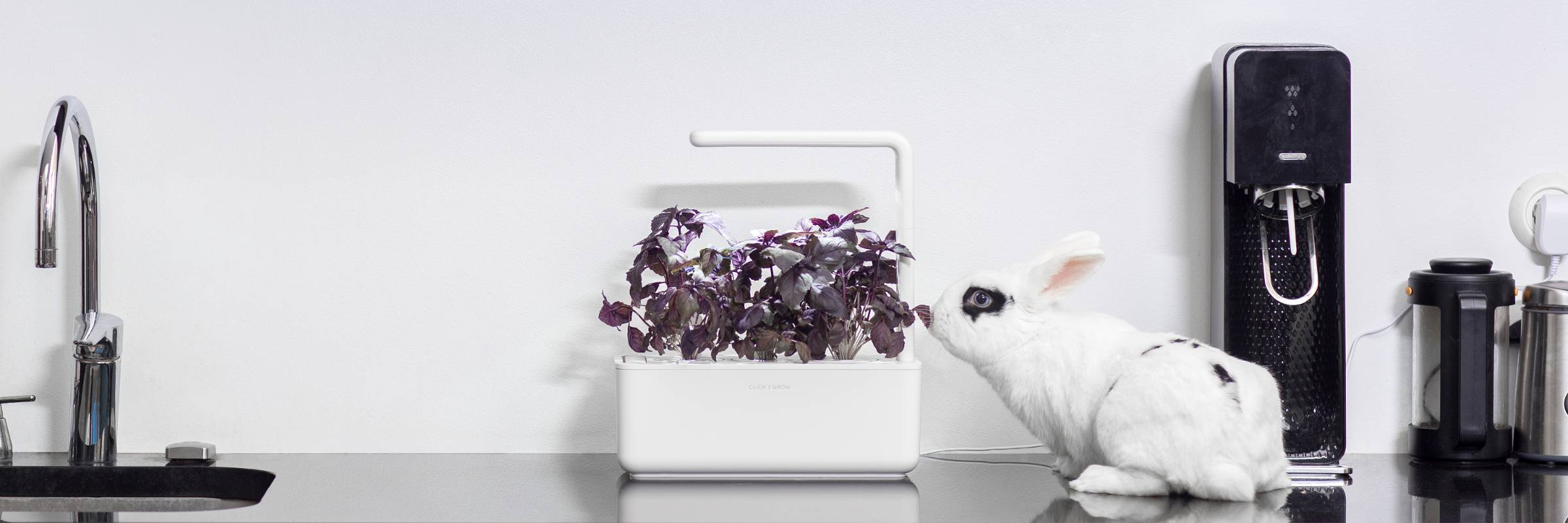 click-and-grow-smart-garden-photopoint