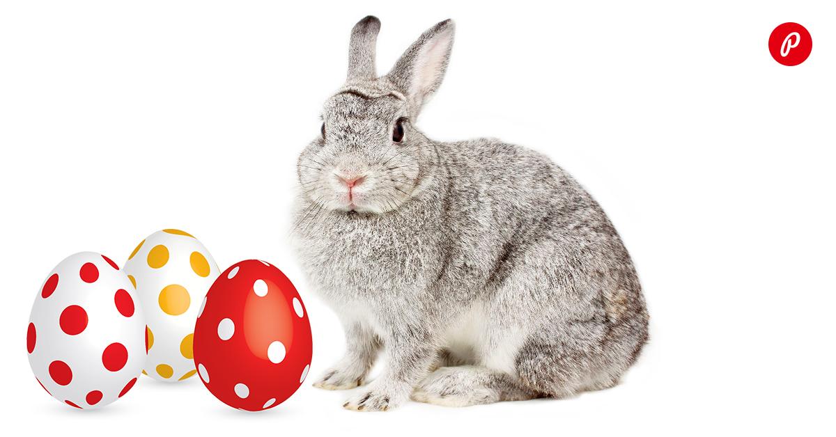 photopointi-veebikauabamaja-munadepuha-kampaania