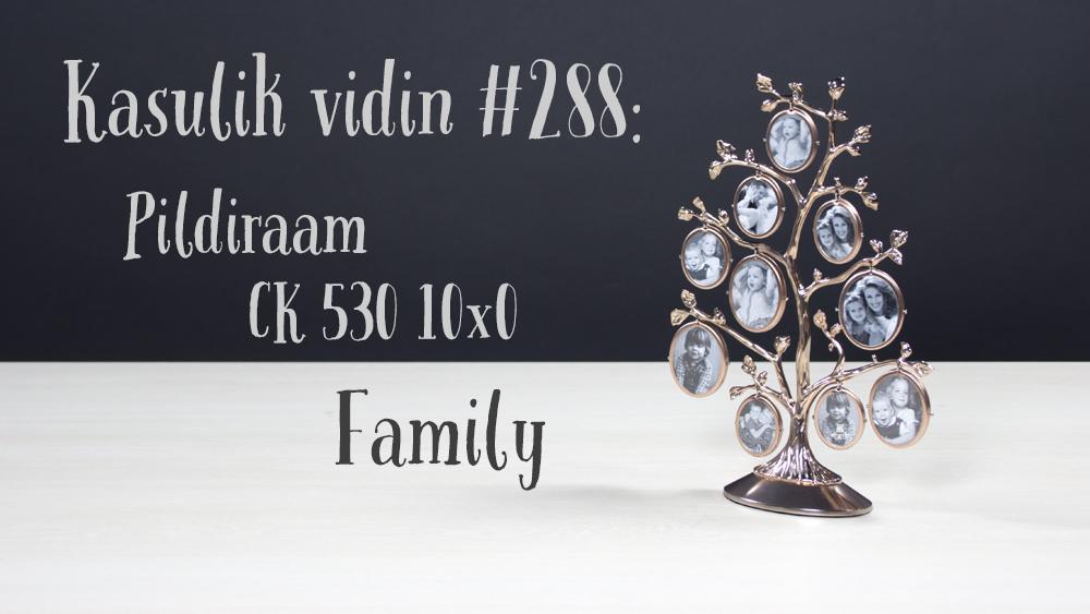 Kasulik vidin #288: Pildiraam CK 530 10x0 Family