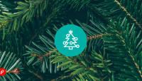 Garanteeritud tarne: 🌲 märgistatud toode jõuab Sinuni kindlasti enne jõuluvana!
