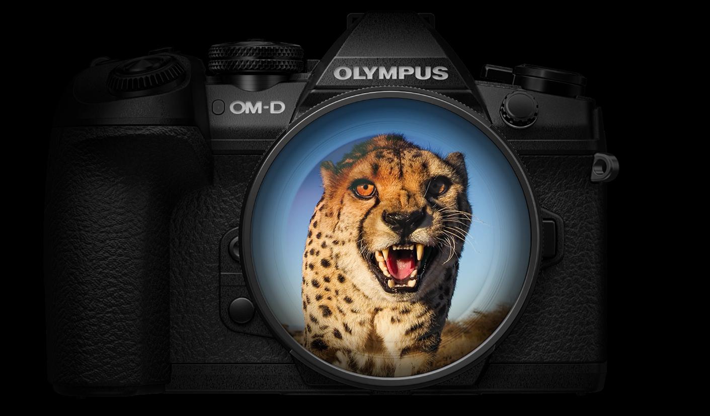Olympus hübriidkaamerate lipulaev 250€ soodsam + kingituseks akutald