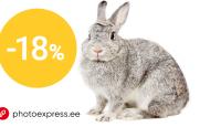 KAMPAANIA: Telli paberfotosid 18% soodsamalt