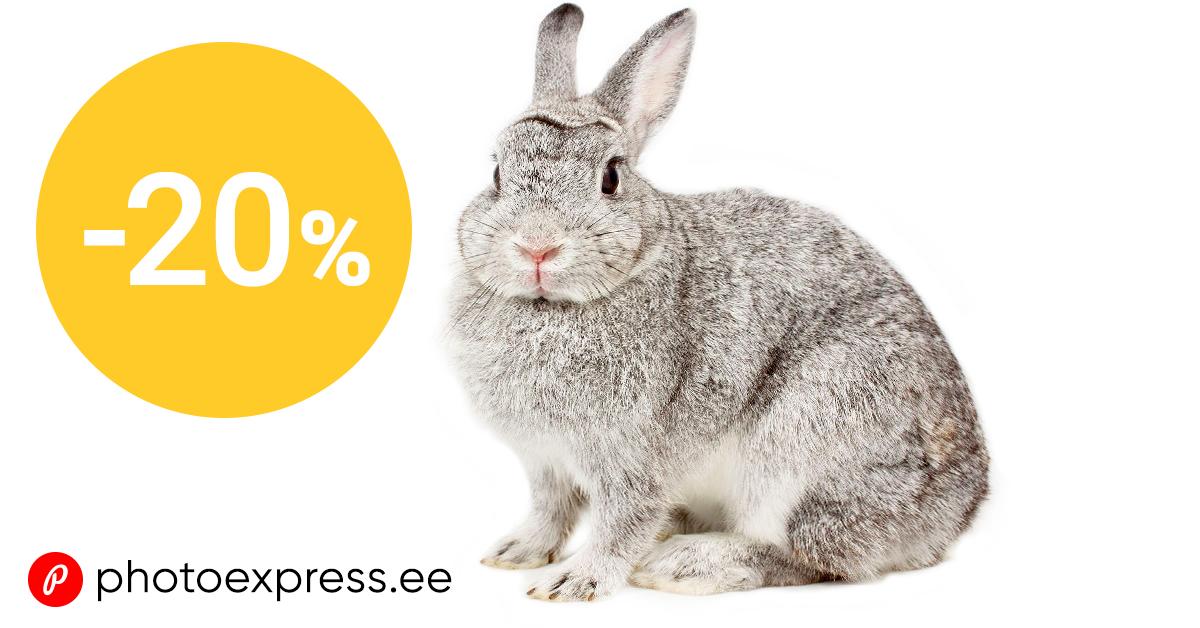 Häid pühi - telli paberfotosid 20% soodsamalt