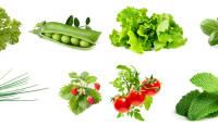 Click & Grow TOP 10 kõige populaarsemat taimekapslit