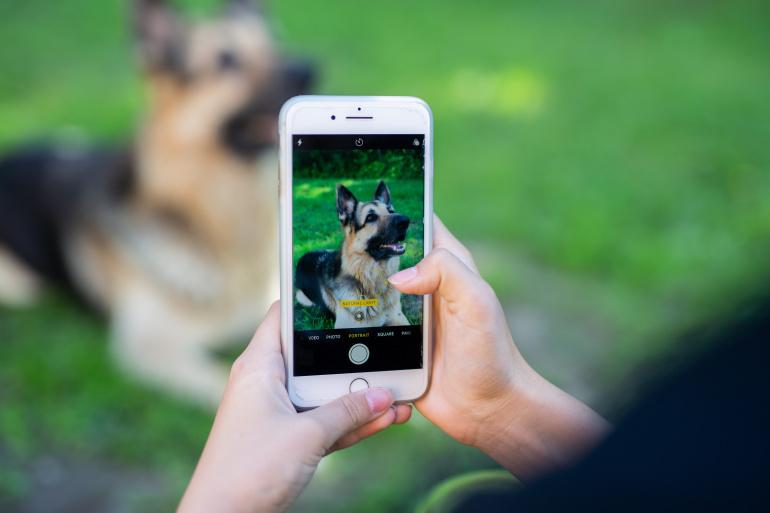 Kuidas IPhone'iga ilusaid pilte teha: Teravustamine, Live Photo, Portrait Mode