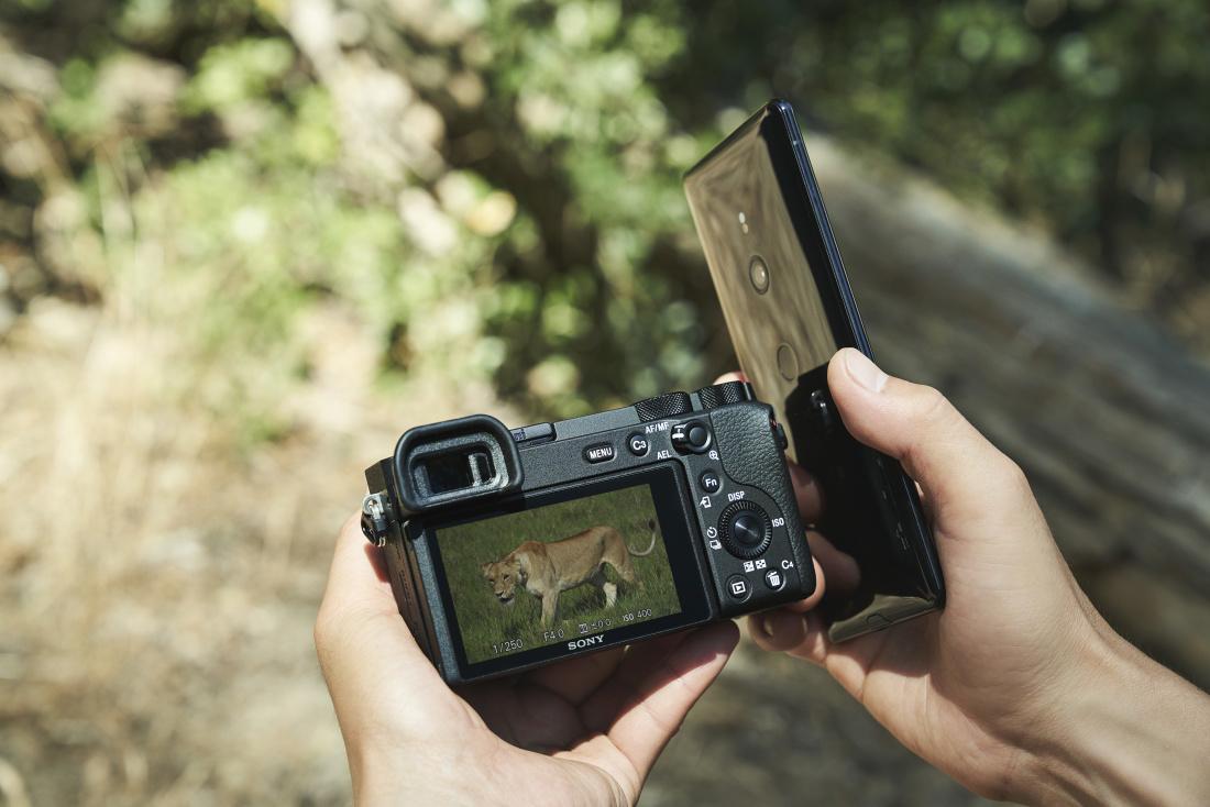Sony a6600 hübriidkaamera
