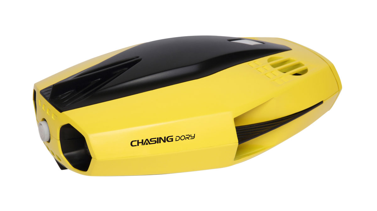 Chasing-Innovation Dory