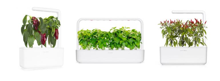 Värskenda oma Click & Grow maitseainepeenart uhiuute taimekapslitega